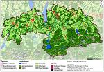 Versorgungssicherheit im Oberland durch Biomasse - wie viel kann noch zugebaut werden?